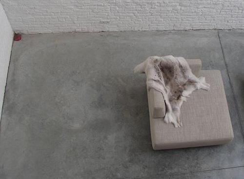 sol en beton esprit industriel