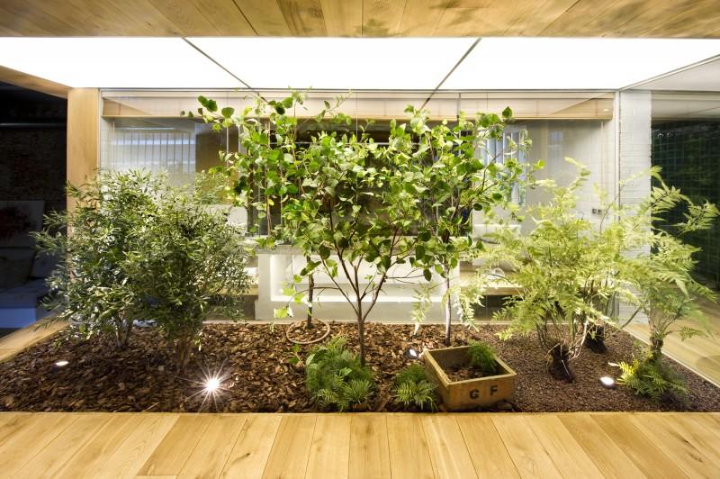 Jardin intérieur dans le loft