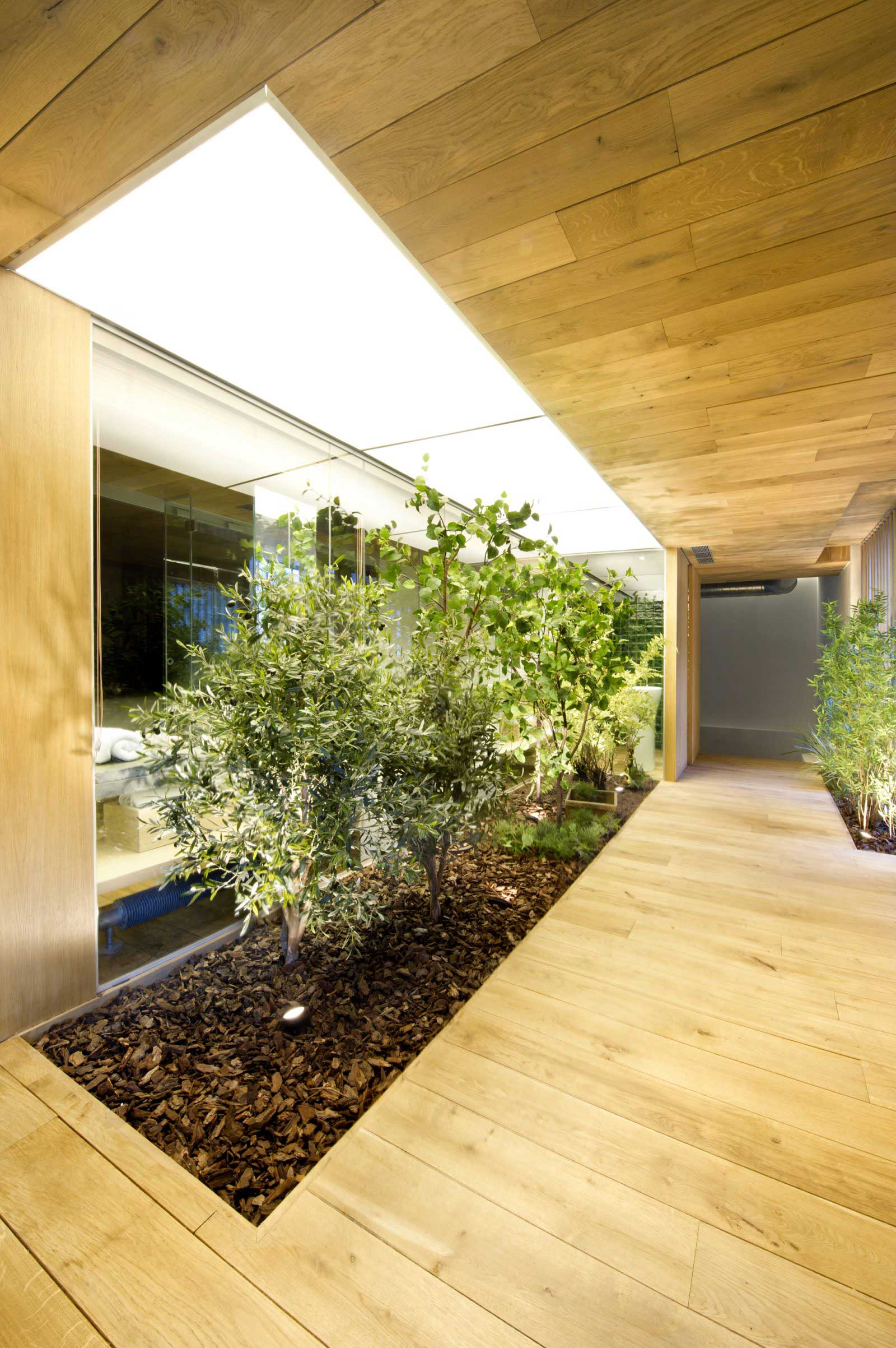 Plantes intégrées dans le sol du loft