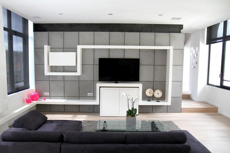 E cube lofts vendre et louer lille euratechnologie for Deco mur tv