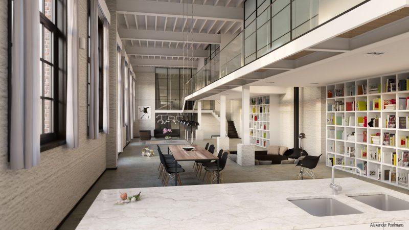 Grand loft en 3d for Photo de loft renover