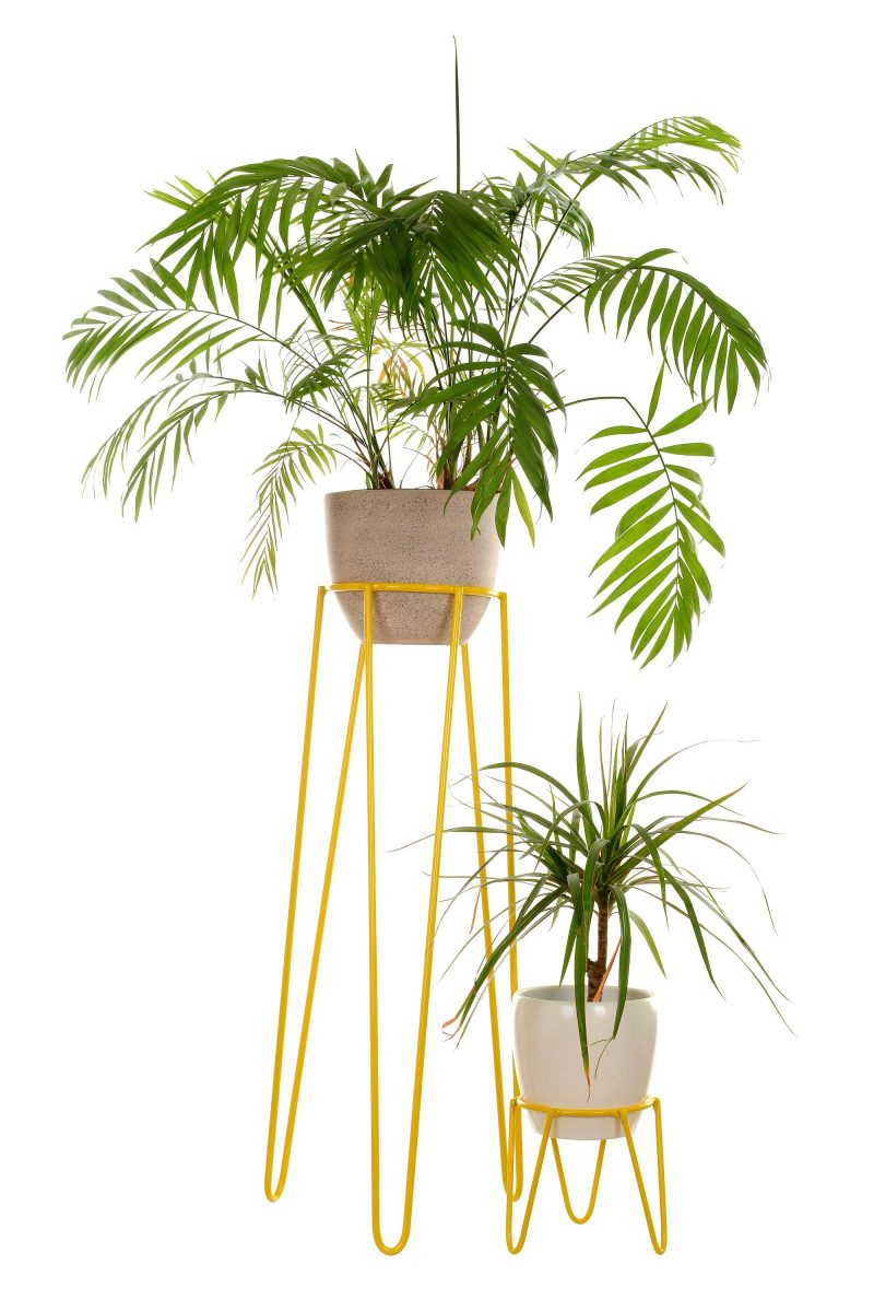 support plantes etagre plantes tabourets fleurs support. Black Bedroom Furniture Sets. Home Design Ideas
