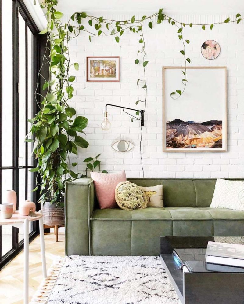 Canape vert déco avec des plantes