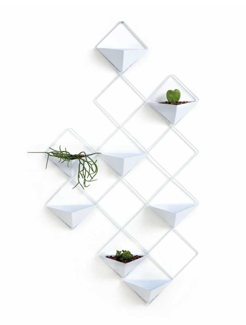 Décorer un mur avec des plantes vertes