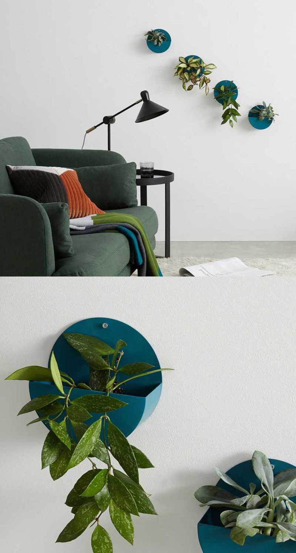 Support mural design intérieur pour plante