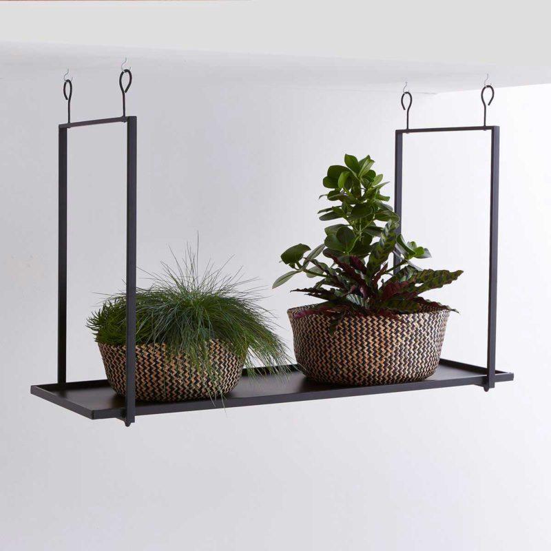 Étagère suspendue au plafond avec plantes